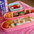 【塾弁当】鶏塩ソテー