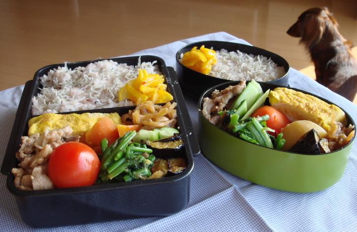 豚の簡単炒めと野菜煮弁当