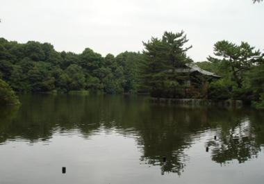 20090801_6