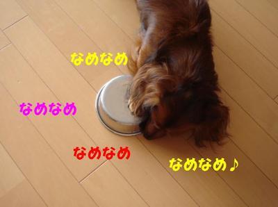 20090908_1